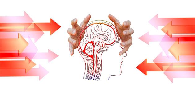 cultura, il cibo per la mente